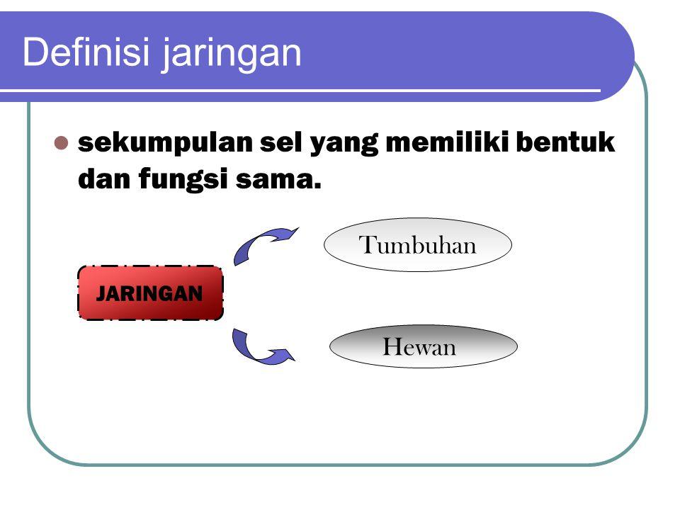 Definisi jaringan sekumpulan sel yang memiliki bentuk dan fungsi sama.