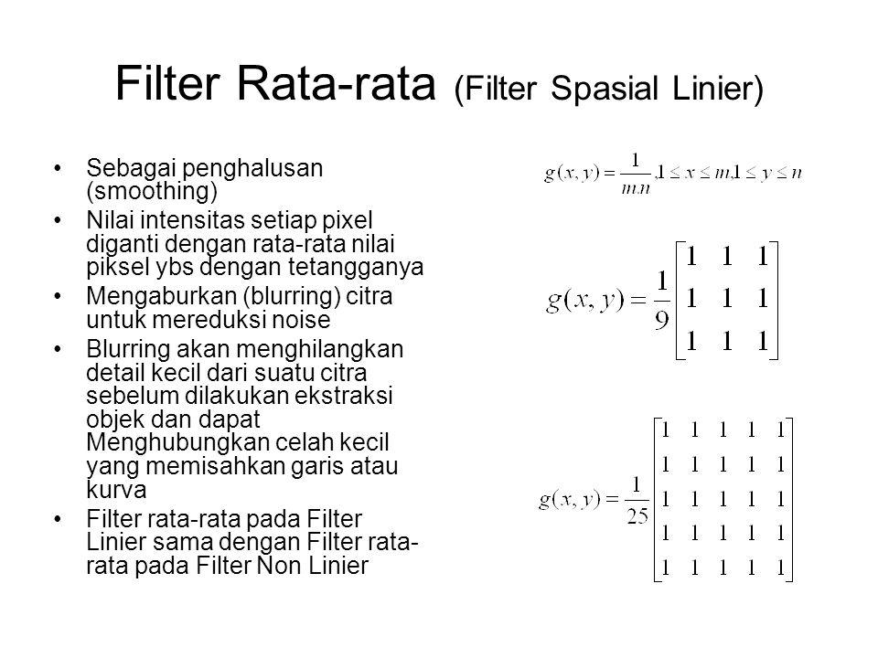 Filter Rata-rata (Filter Spasial Linier)