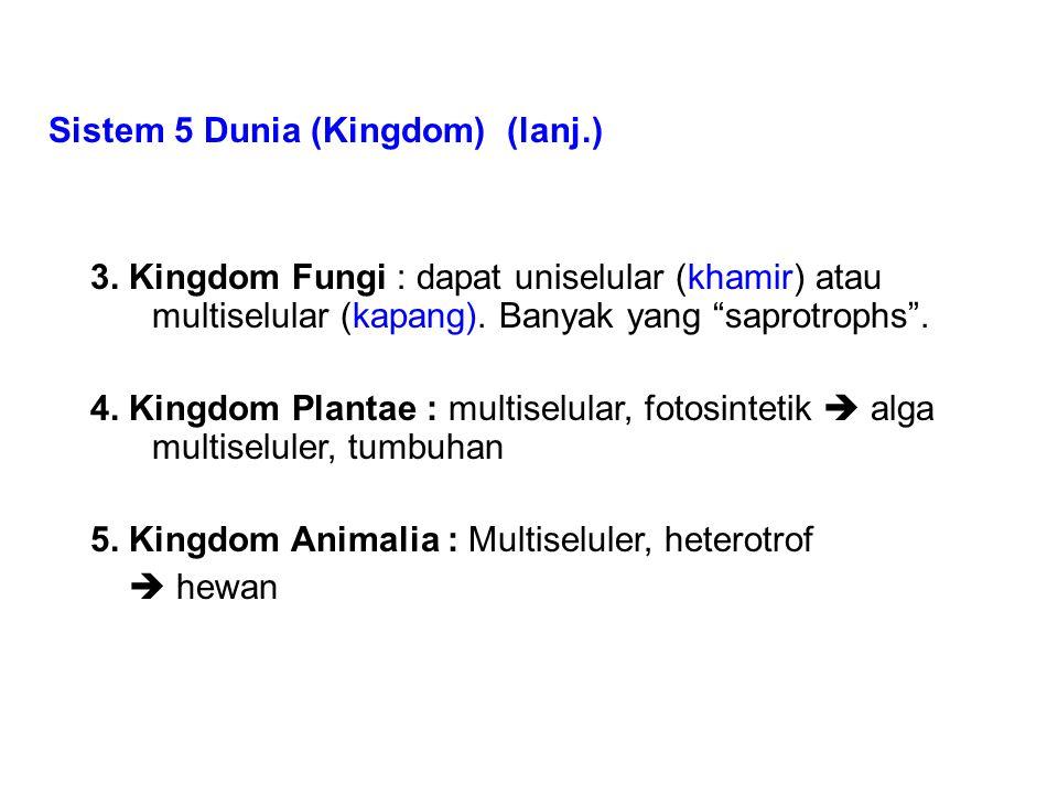 Sistem 5 Dunia (Kingdom) (lanj.)