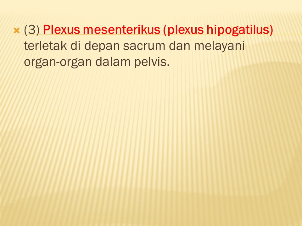 (3) Plexus mesenterikus (plexus hipogatilus) terletak di depan sacrum dan melayani organ-organ dalam pelvis.