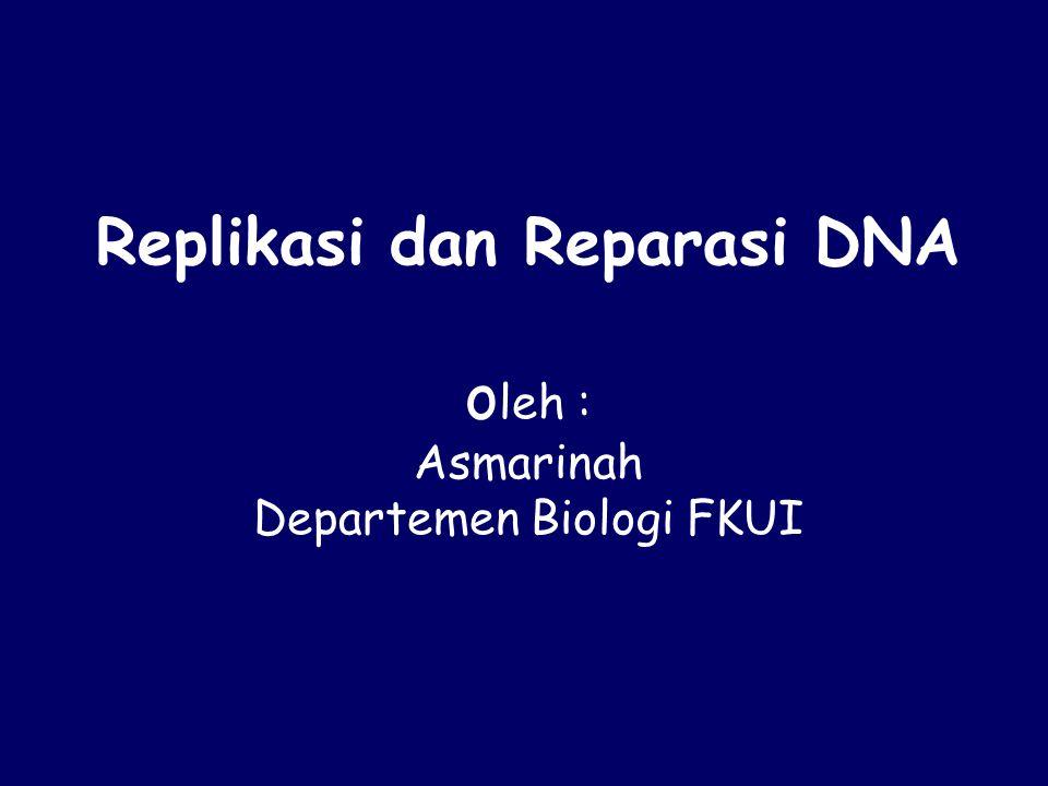 Replikasi dan Reparasi DNA oleh : Asmarinah Departemen Biologi FKUI