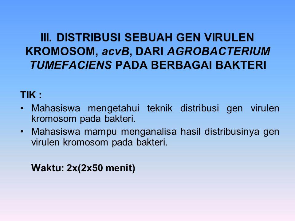 III. DISTRIBUSI SEBUAH GEN VIRULEN KROMOSOM, acvB, DARI AGROBACTERIUM TUMEFACIENS PADA BERBAGAI BAKTERI