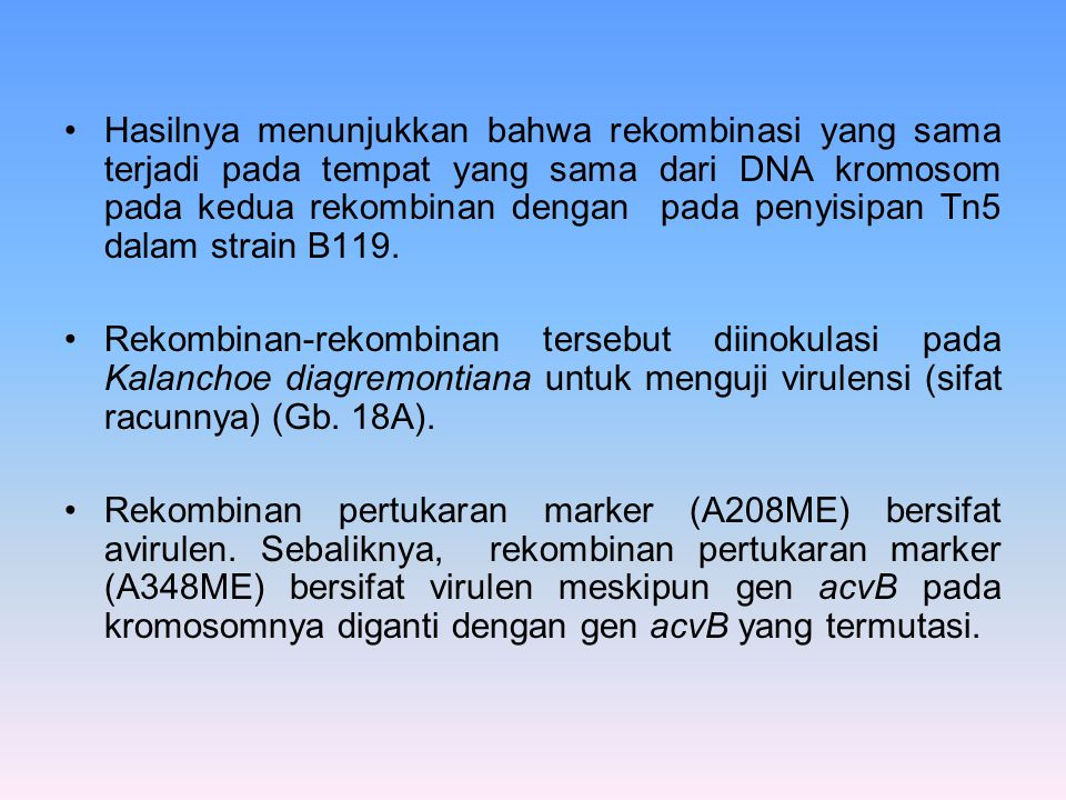 Hasilnya menunjukkan bahwa rekombinasi yang sama terjadi pada tempat yang sama dari DNA kromosom pada kedua rekombinan dengan pada penyisipan Tn5 dalam strain B119.