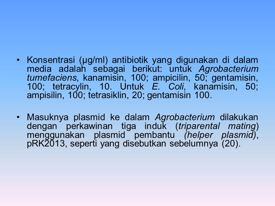 Konsentrasi (µg/ml) antibiotik yang digunakan di dalam media adalah sebagai berikut: untuk Agrobacterium tumefaciens, kanamisin, 100; ampicilin, 50; gentamisin, 100; tetracylin, 10. Untuk E. Coli, kanamisin, 50; ampisilin, 100; tetrasiklin, 20; gentamisin 100.