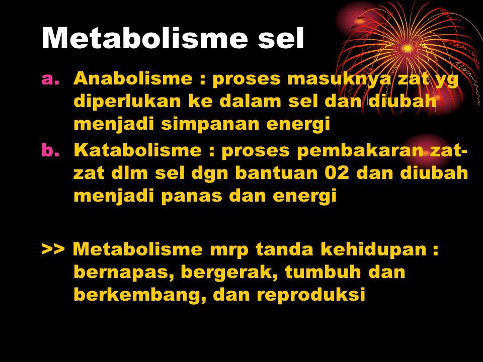 Metabolisme sel Anabolisme : proses masuknya zat yg diperlukan ke dalam sel dan diubah menjadi simpanan energi.