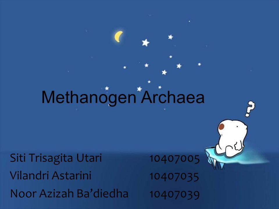 Methanogen Archaea Siti Trisagita Utari 10407005