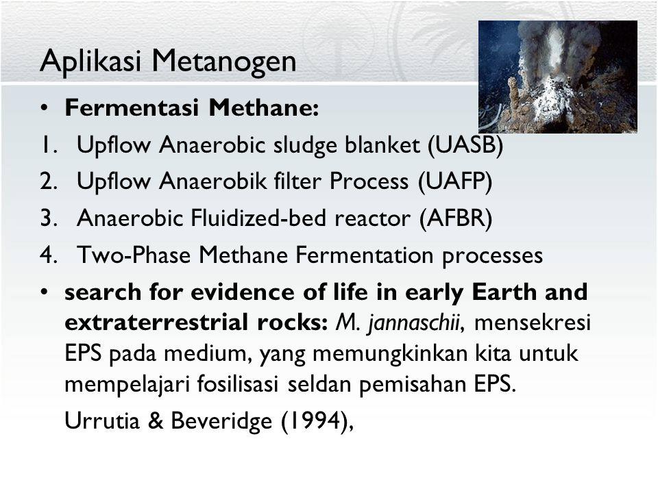 Aplikasi Metanogen Fermentasi Methane: