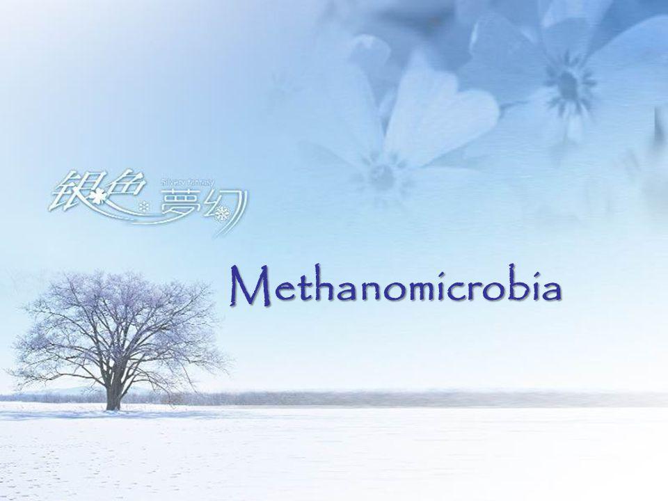 Methanomicrobia