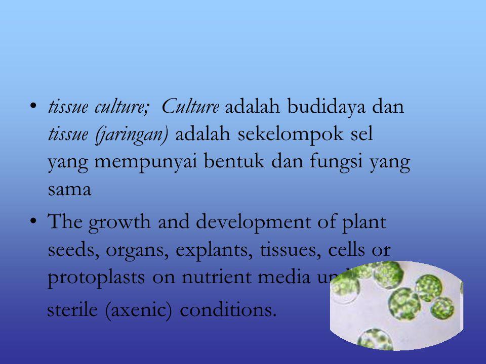 tissue culture; Culture adalah budidaya dan tissue (jaringan) adalah sekelompok sel yang mempunyai bentuk dan fungsi yang sama