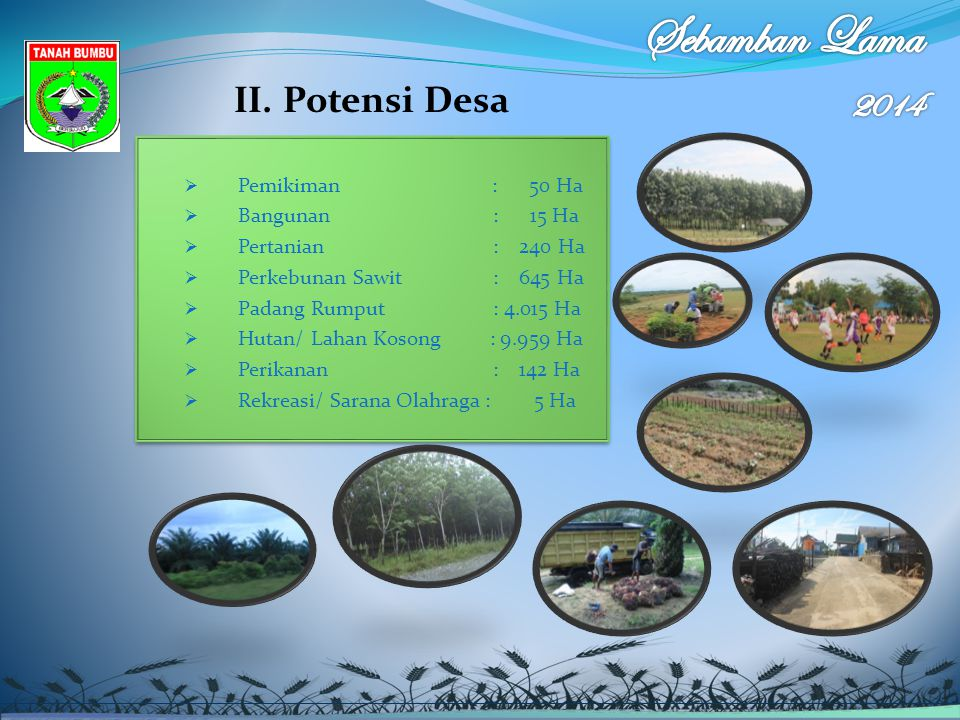 Sebamban Lama 2014 II. Potensi Desa Pemikiman : 50 Ha Bangunan : 15 Ha