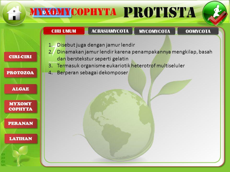 myxomycophyta Disebut juga dengan jamur lendir