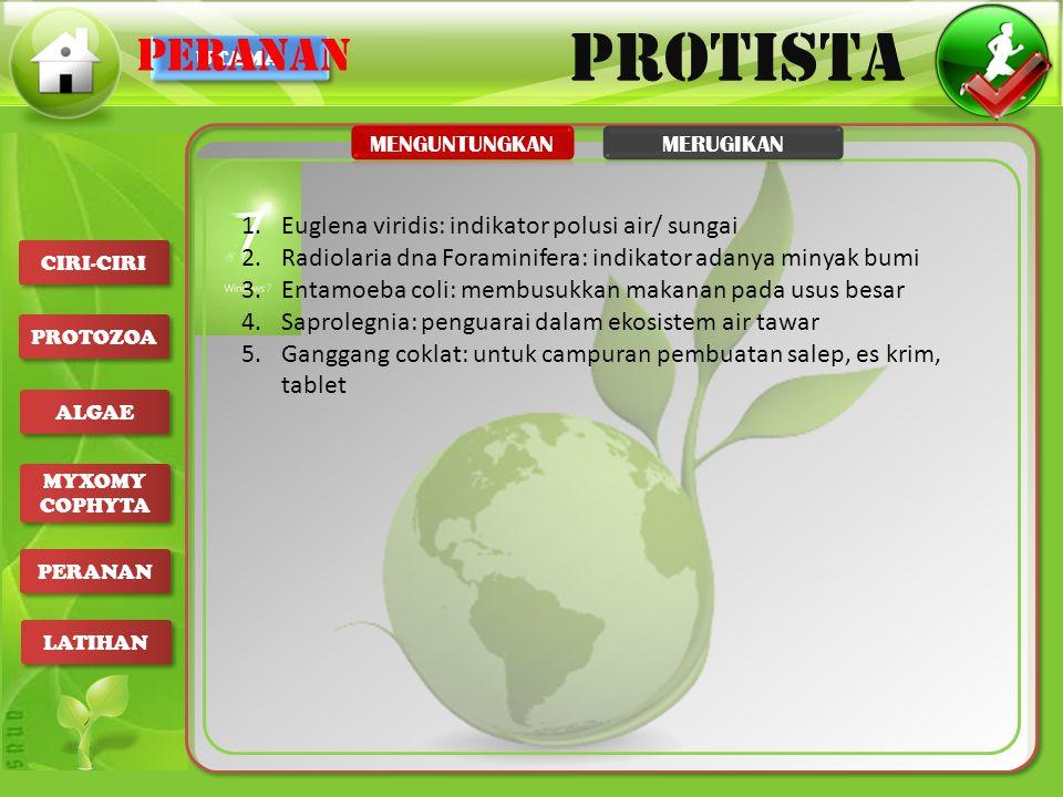 PERANAN Euglena viridis: indikator polusi air/ sungai