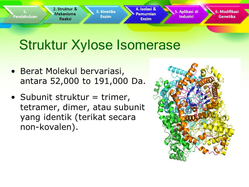 Struktur Xylose Isomerase