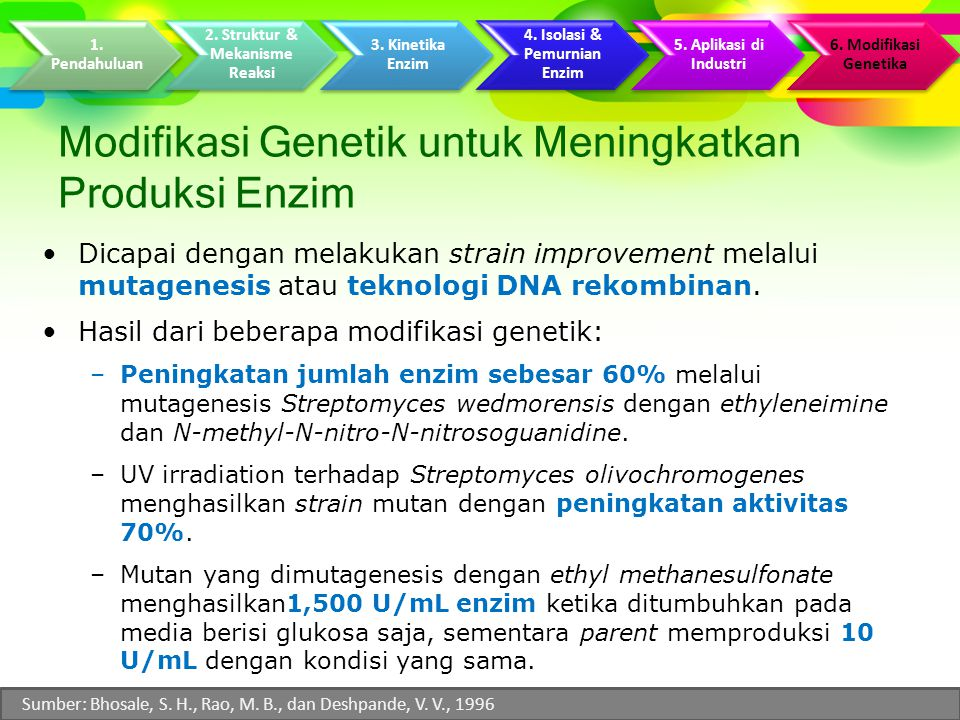 Modifikasi Genetik untuk Meningkatkan Produksi Enzim