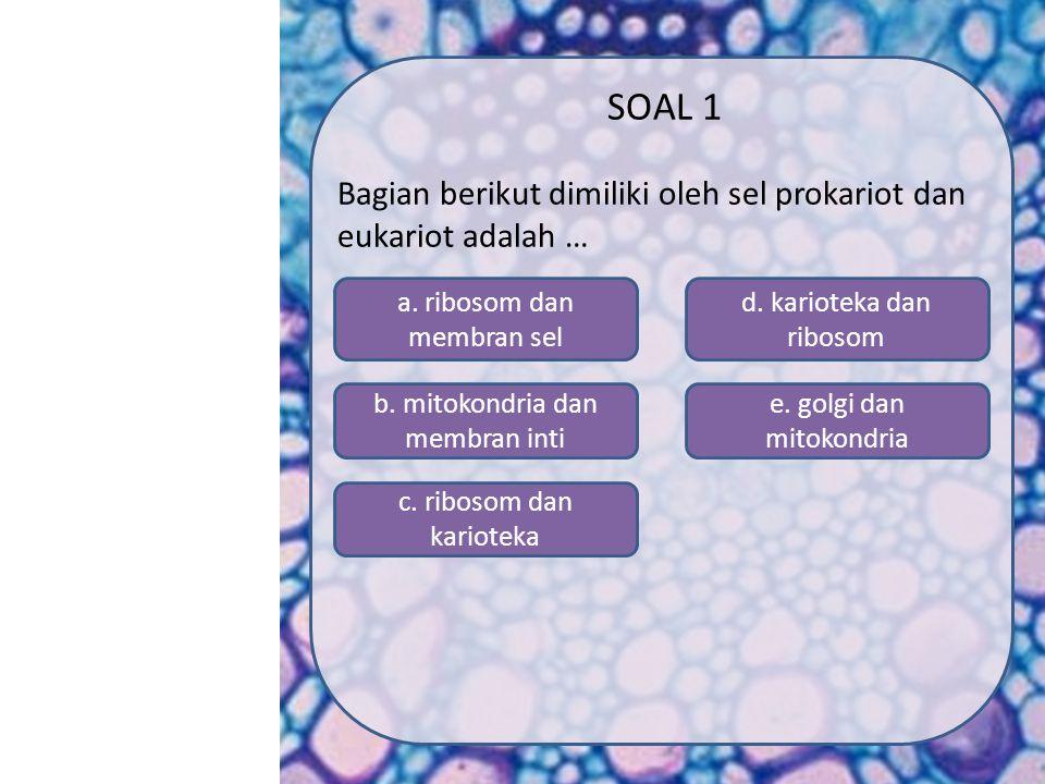 SOAL 1 Bagian berikut dimiliki oleh sel prokariot dan eukariot adalah … a. ribosom dan membran sel.