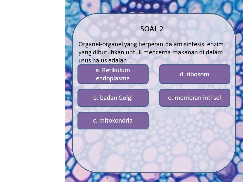 a. Retikulum endoplasma