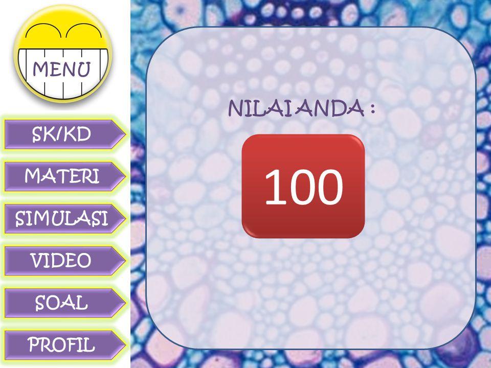 NILAI ANDA : 100