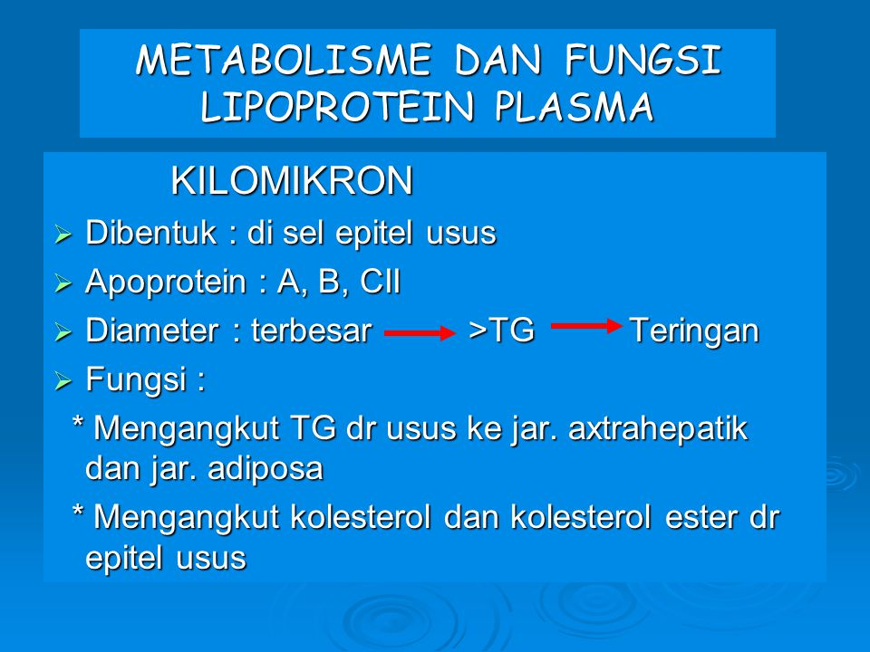 METABOLISME DAN FUNGSI LIPOPROTEIN PLASMA