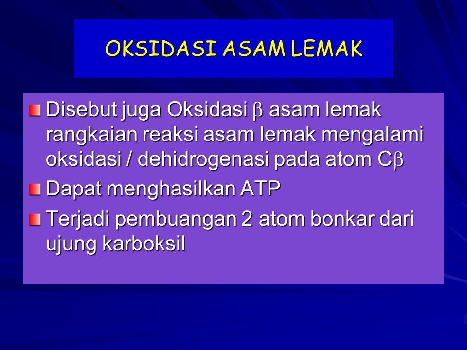 OKSIDASI ASAM LEMAK Disebut juga Oksidasi  asam lemak rangkaian reaksi asam lemak mengalami oksidasi / dehidrogenasi pada atom C
