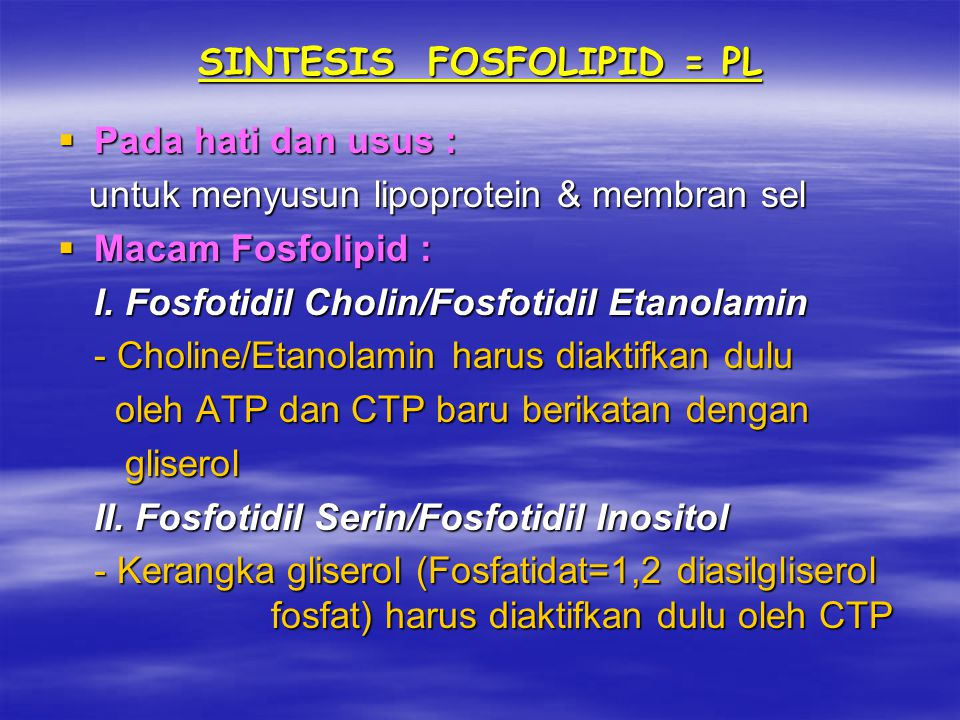 SINTESIS FOSFOLIPID = PL