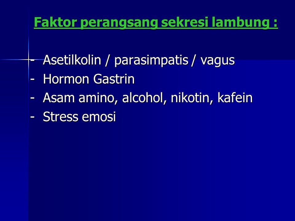 - Asetilkolin / parasimpatis / vagus - Hormon Gastrin