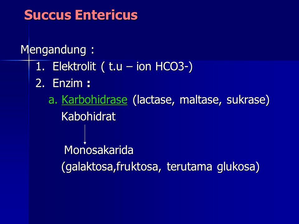 Succus Entericus Mengandung : 1. Elektrolit ( t.u – ion HCO3-)
