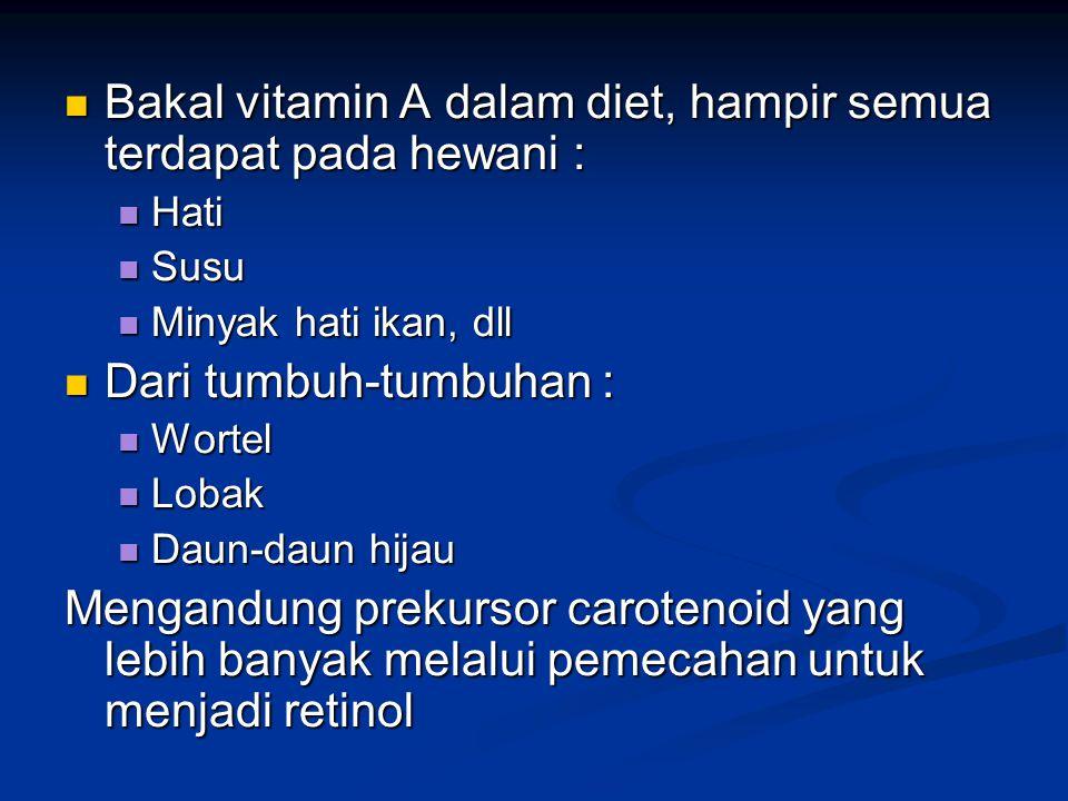 Bakal vitamin A dalam diet, hampir semua terdapat pada hewani :