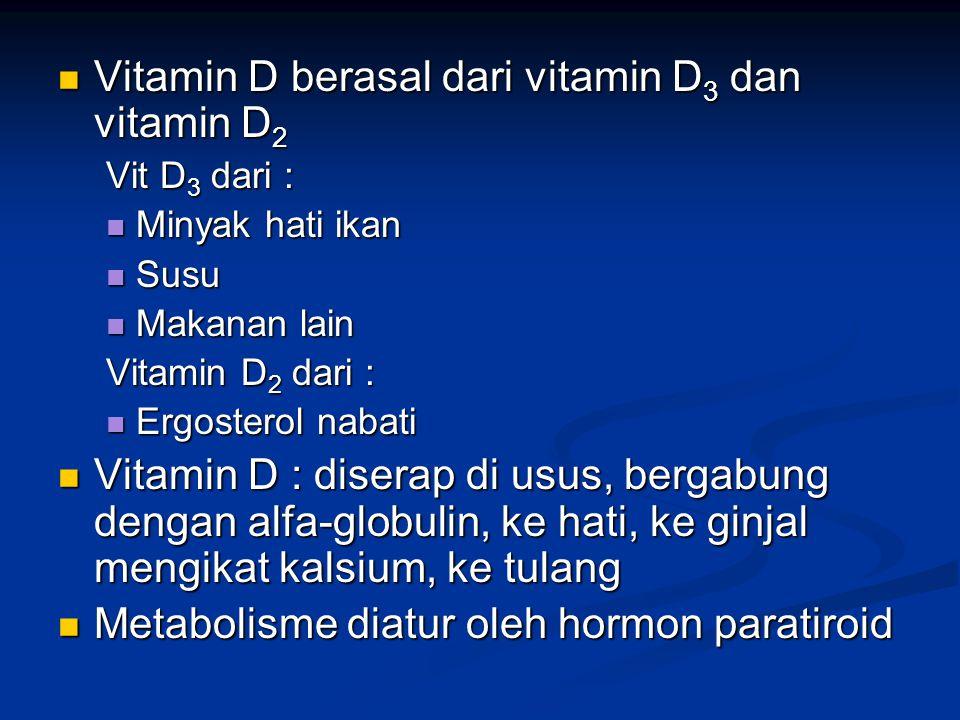 Vitamin D berasal dari vitamin D3 dan vitamin D2