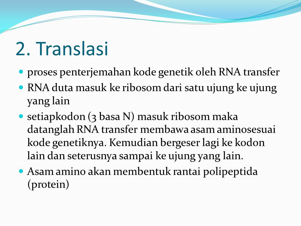 2. Translasi proses penterjemahan kode genetik oleh RNA transfer