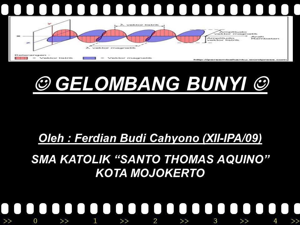  GELOMBANG BUNYI  Oleh : Ferdian Budi Cahyono (XII-IPA/09)
