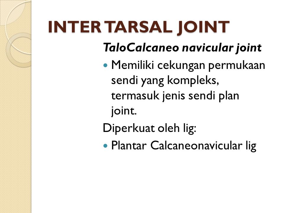 INTER TARSAL JOINT TaloCalcaneo navicular joint