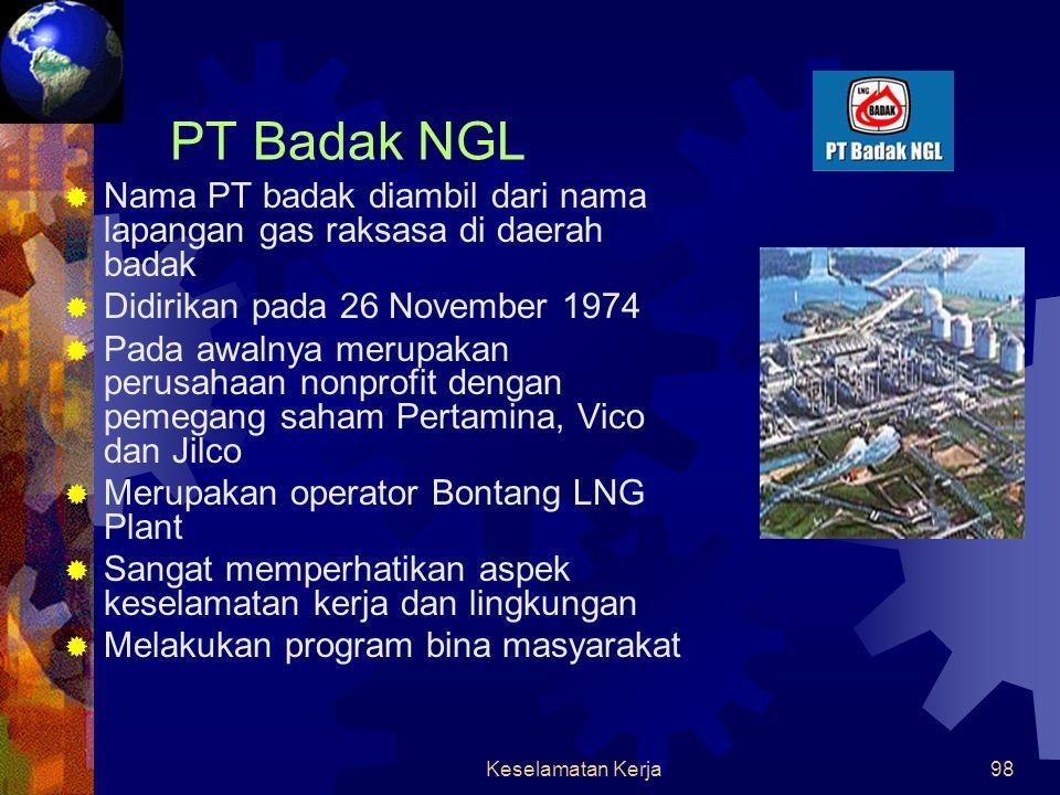 PT Badak NGL Nama PT badak diambil dari nama lapangan gas raksasa di daerah badak. Didirikan pada 26 November 1974.