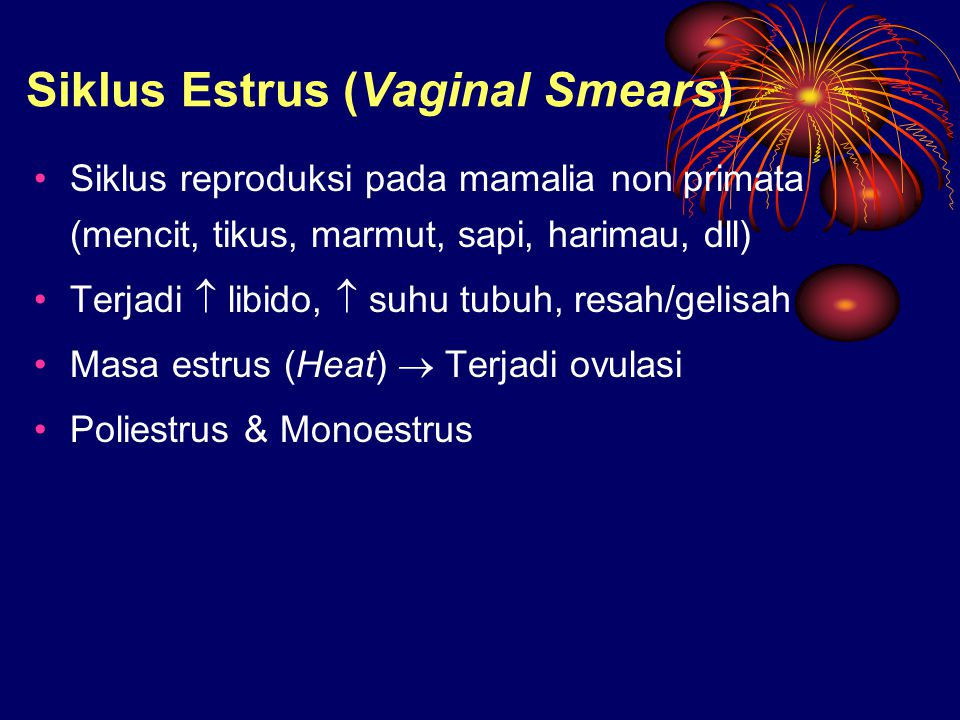 Siklus Estrus (Vaginal Smears)