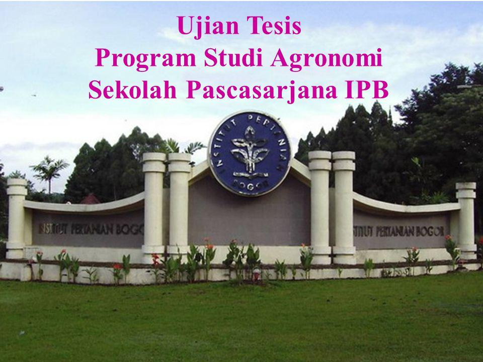Ujian Tesis Program Studi Agronomi Sekolah Pascasarjana IPB