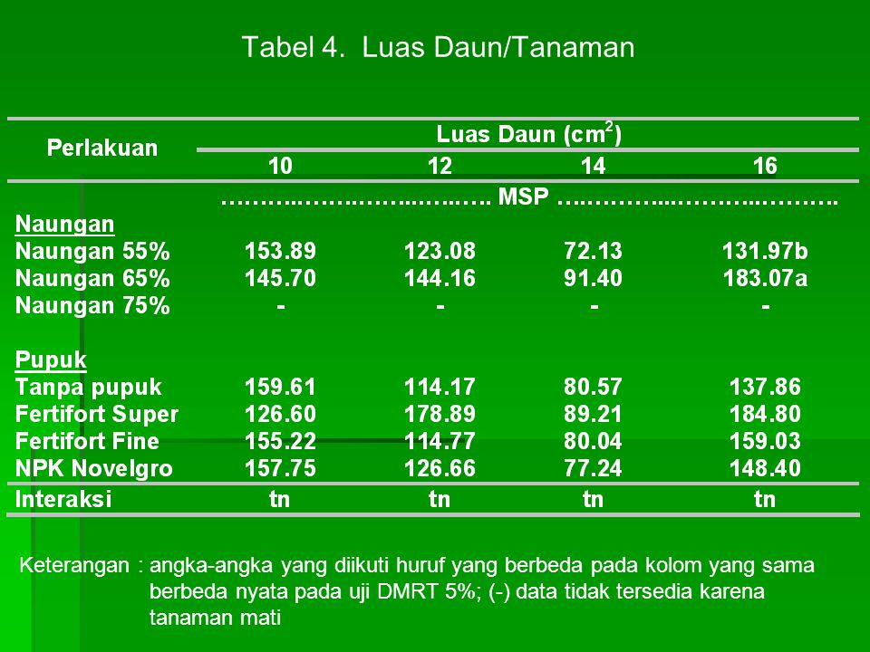 Tabel 4. Luas Daun/Tanaman