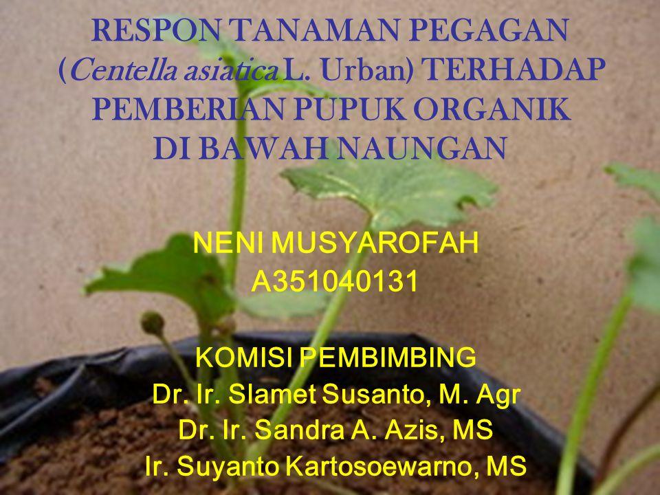 Dr. Ir. Slamet Susanto, M. Agr Ir. Suyanto Kartosoewarno, MS