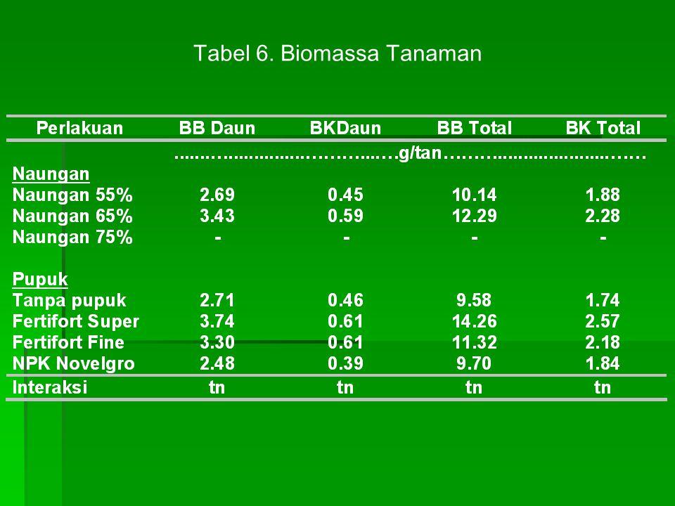 Tabel 6. Biomassa Tanaman
