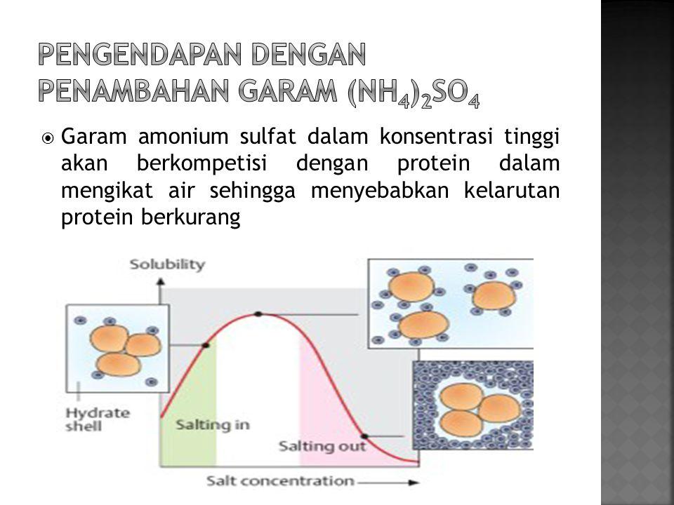 Pengendapan dengan penambahan garam (NH4)2SO4