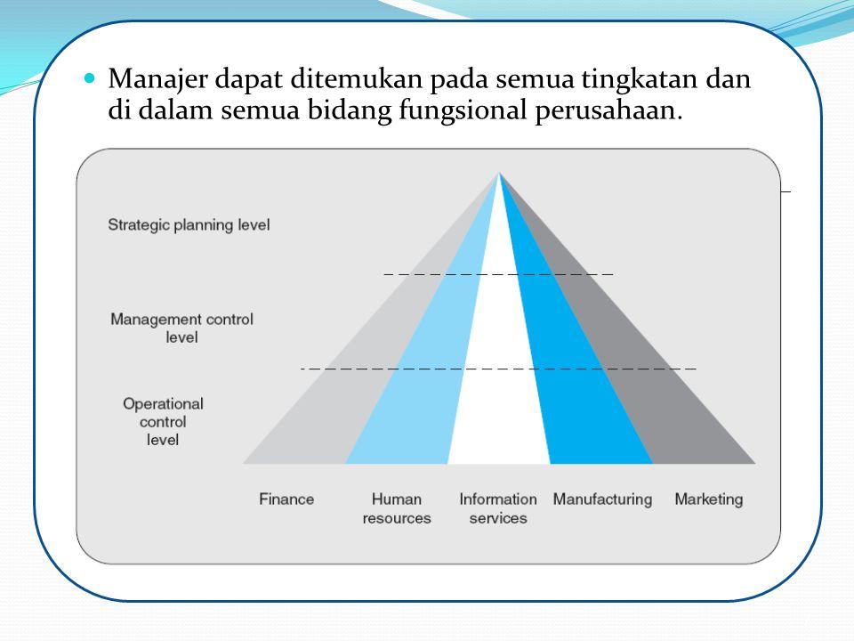 Manajer dapat ditemukan pada semua tingkatan dan di dalam semua bidang fungsional perusahaan.