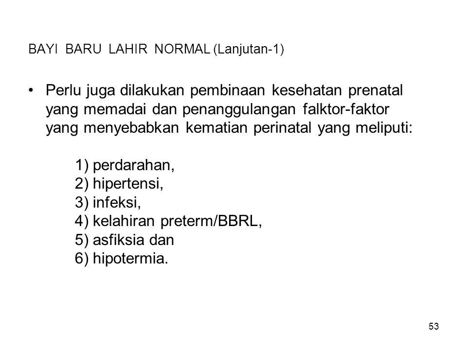 BAYI BARU LAHIR NORMAL (Lanjutan-1)