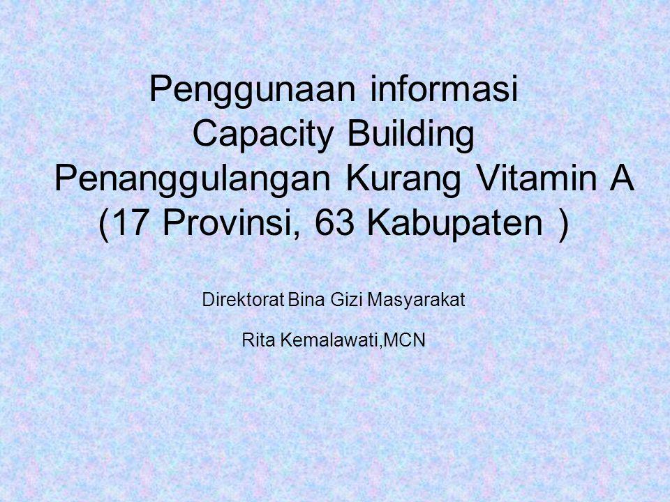 Penggunaan informasi Capacity Building Penanggulangan Kurang Vitamin A (17 Provinsi, 63 Kabupaten ) Direktorat Bina Gizi Masyarakat Rita Kemalawati,MCN