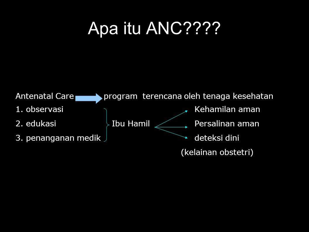 Apa itu ANC Antenatal Care program terencana oleh tenaga kesehatan