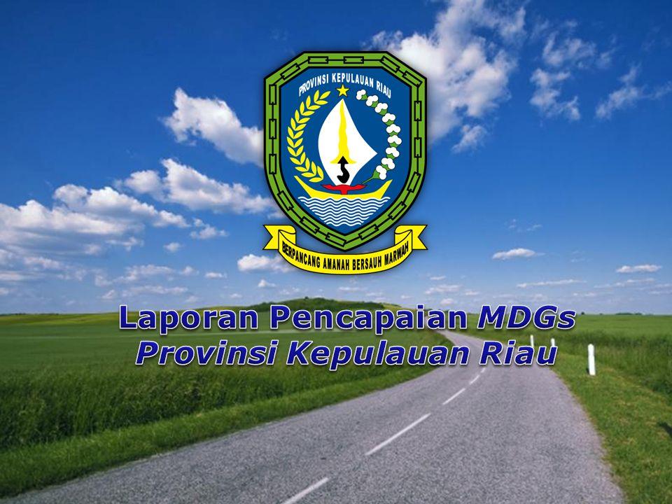 Laporan Pencapaian MDGs Provinsi Kepulauan Riau