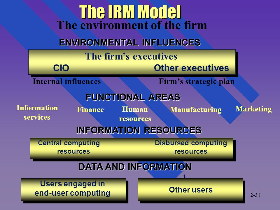 The IRM Model The environment of the firm The firm's executives