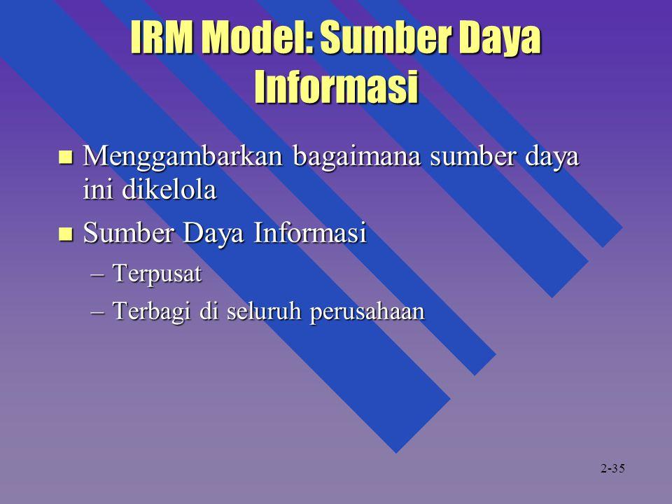 IRM Model: Sumber Daya Informasi