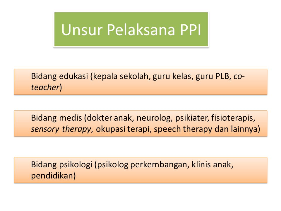 Unsur Pelaksana PPI Bidang edukasi (kepala sekolah, guru kelas, guru PLB, co-teacher)