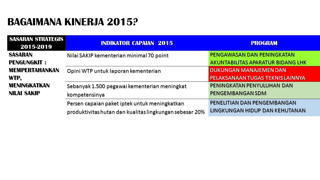 BAGAIMANA KINERJA 2015 SASARAN STRATEGIS 2015-2019