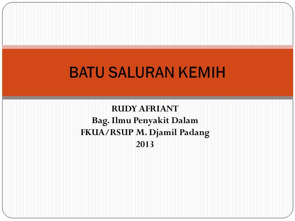 RUDY AFRIANT Bag. Ilmu Penyakit Dalam FKUA/RSUP M. Djamil Padang 2013