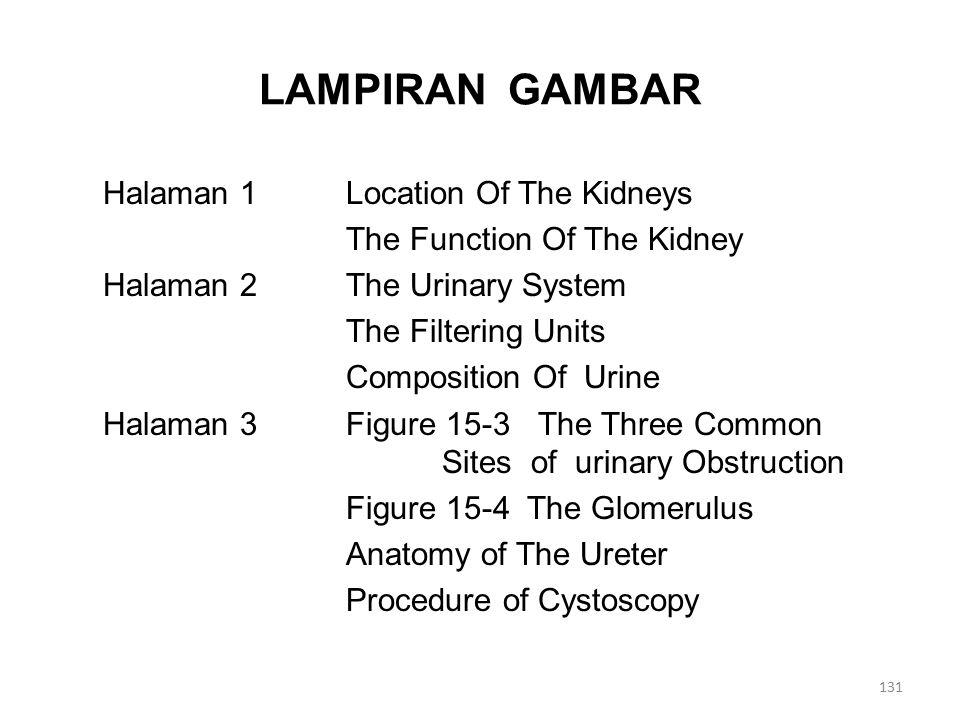 LAMPIRAN GAMBAR