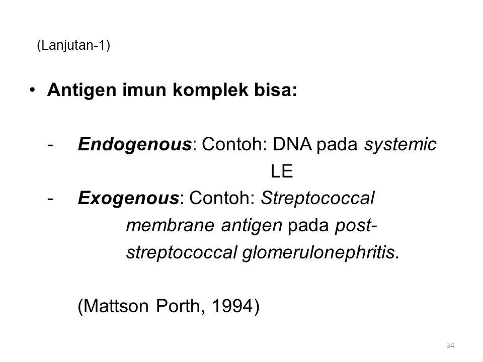Antigen imun komplek bisa: - Endogenous: Contoh: DNA pada systemic LE